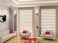 triple-shade-blinds